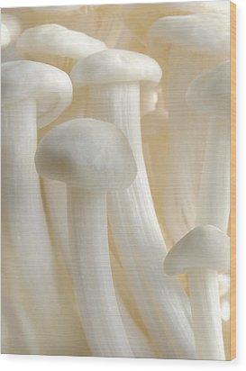 Enoki Forest  Wood Print