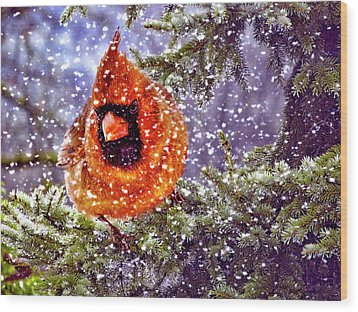 Wood Print featuring the photograph Enough Of This White Stuff by Diane Schuster