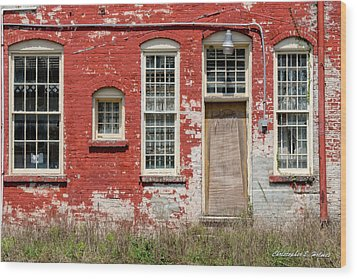 Wood Print featuring the photograph Enough Windows by Christopher Holmes