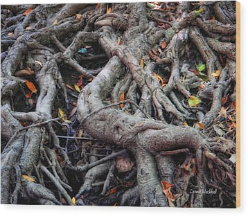 Entanglement Wood Print by Donna Blackhall