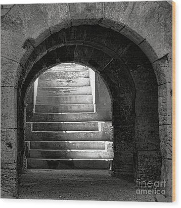 Wood Print featuring the photograph Enter The Arena by Olivier Le Queinec