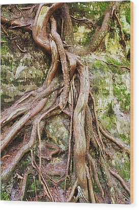 Entwined Wood Print by Anna Villarreal Garbis