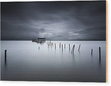 Equilibrium Wood Print by Jorge Maia