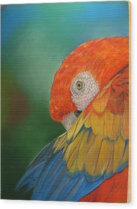 Wood Print featuring the painting Escondida by Ceci Watson