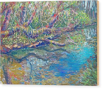 Estero River West Wood Print by Laurie Paci