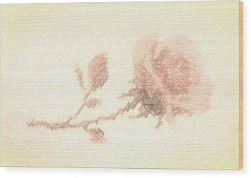 Wood Print featuring the photograph Etched Red Rose by Linda Phelps