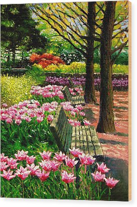 Eternal Spring Wood Print by John Lautermilch