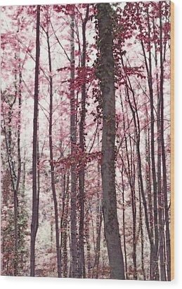 Ethereal Austrian Forest In Marsala Burgundy Wine Wood Print