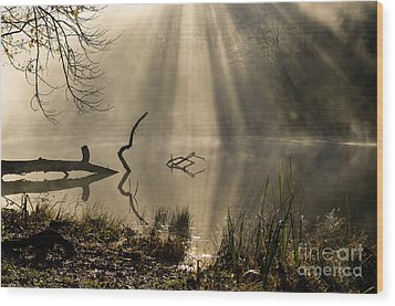 Wood Print featuring the photograph Ethereal - D009972 by Daniel Dempster