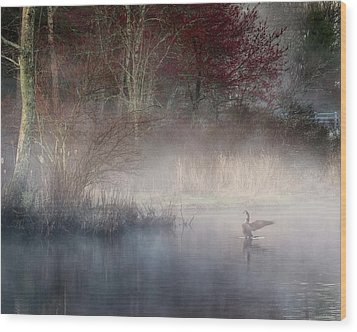 Wood Print featuring the photograph Ethereal Goose by Bill Wakeley