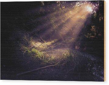 Ethereal Light Wood Print by Stewart Scott