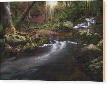 Wood Print featuring the photograph Ethereal Morning 2017 by Bill Wakeley