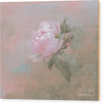 Ethereal Rose Wood Print