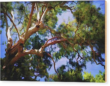 Wood Print featuring the digital art Eucalypt by Margaret Hormann Bfa