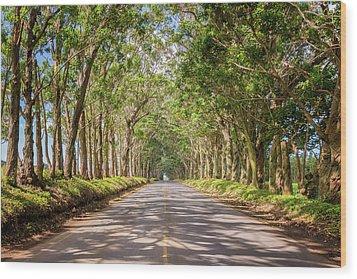 Eucalyptus Tree Tunnel - Kauai Hawaii Wood Print by Brian Harig