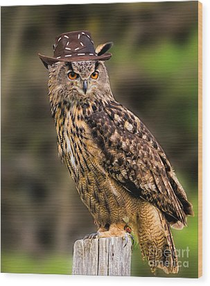 Eurasian Eagle Owl With A Cowboy Hat Wood Print by Les Palenik
