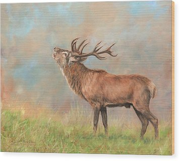 Wood Print featuring the painting European Red Deer by David Stribbling