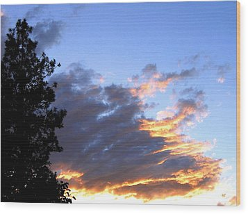 Evening Color Wood Print by Will Borden