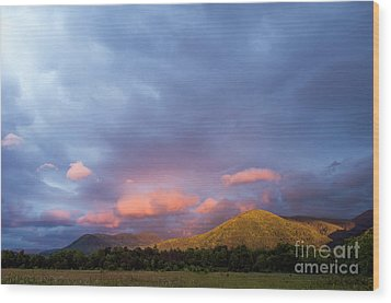 Wood Print featuring the photograph Evening In Cades Cove - D009913 by Daniel Dempster