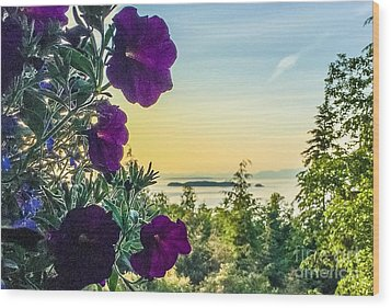 Evening Light On Orcas Island Wood Print by William Wyckoff