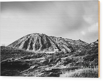Evening On Koko Crater Wood Print by Charmian Vistaunet