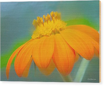 Evening Orange Greeting Card Wood Print by William Martin