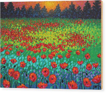Evening Poppies Wood Print by John  Nolan