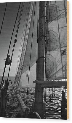 Evening Sail Bw Wood Print
