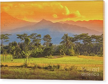 Wood Print featuring the photograph Evening Scene by Charuhas Images