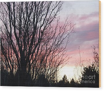 Wood Print featuring the photograph Evening Sky - October 27 by Jackie Mueller-Jones