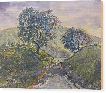Evening Stroll In Millington Dale Wood Print