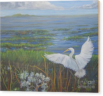 Everglades Egret Wood Print by Anne Marie Brown