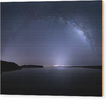 Wood Print featuring the photograph Everglades National Park Milky Way by Mark Andrew Thomas