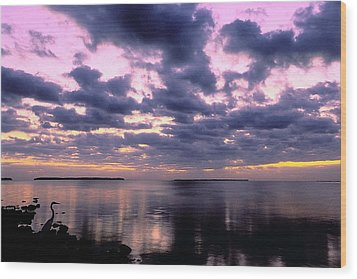 Everglades Sunrise Wood Print