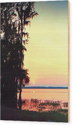 Everglades Sunset Wood Print by Lynnette Johns