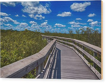 Everglades Trail Wood Print by Swank Photography