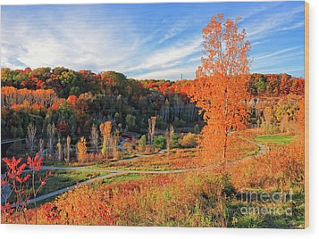 Wood Print featuring the photograph Evergreen Brick Works Autumn by Charline Xia