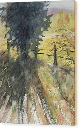 Evergreen Wood Print by Judith Levins