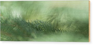 Wood Print featuring the photograph Evergreen Mist by Ann Lauwers