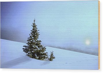Wood Print featuring the painting Evergreen Offspring P D P by David Dehner