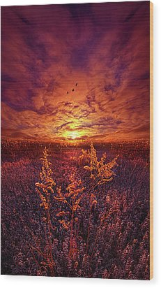 Wood Print featuring the photograph Every Sound Returns To Silence by Phil Koch
