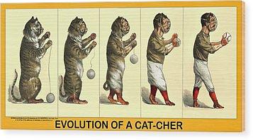 Evolution Of A Cat-cher Wood Print