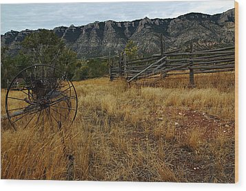 Ewing-snell Ranch 2 Wood Print by Larry Ricker