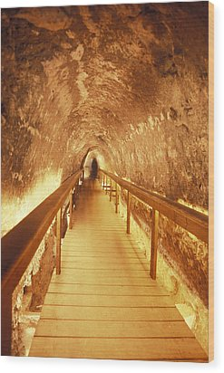 Excavations Of The Ancient Water Tunnel Wood Print by Richard Nowitz