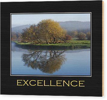 Excellence Inspirational Motivational Poster Art Wood Print by Christina Rollo