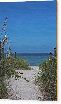 Wood Print featuring the photograph Exclusively Captiva by Michiale Schneider