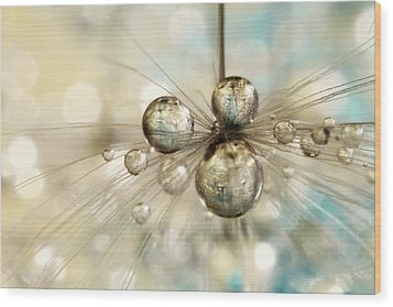 Wood Print featuring the photograph Exploding Dandy Drops by Sharon Johnstone