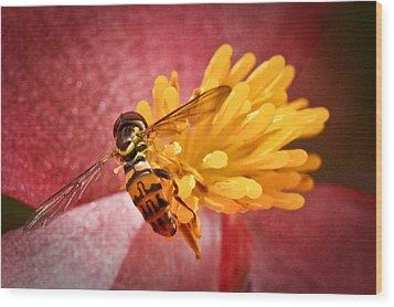 Exploring A Flower Wood Print by Ryan Kelly