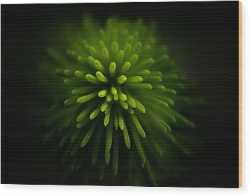 Explosion Wood Print by Peter Scott