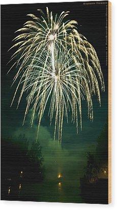 Explosive Flowers 12 Wood Print by Heinz - Juergen Oellers